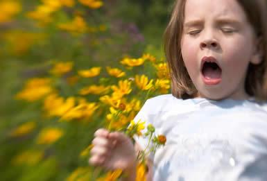 virág és allergia